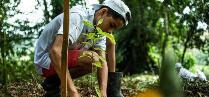 Ocho casos de éxito sobre finanzas climáticas en Centroamérica
